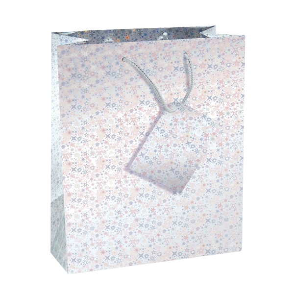 Image for Holographic Gift Bags Size 5 Bottle Assorted (Pack of 12)