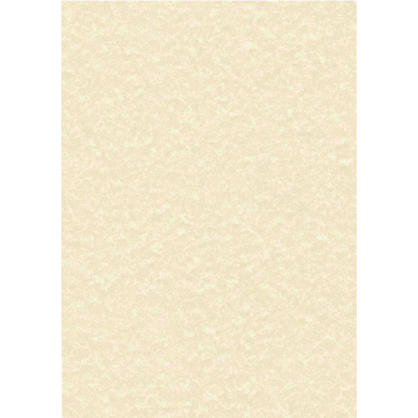 Decadry Parchment A4 Letterhead Paper 95gsm Champagne (Pack of 100) PCL1601