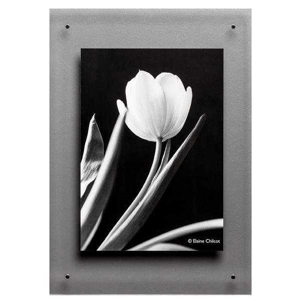 Photo Album Company Clear Acrylic A3 Wall Frame ADPA3