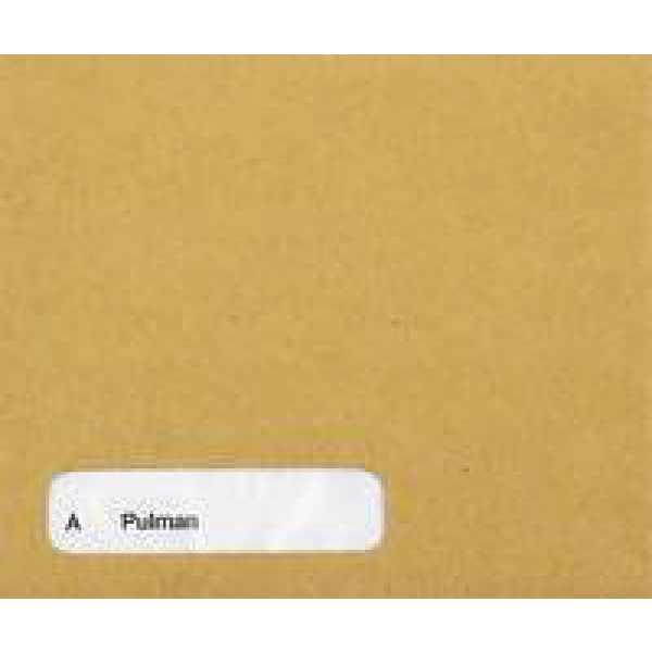 Custom Forms Sage Wage Envelope (Pack of 1000) SE45