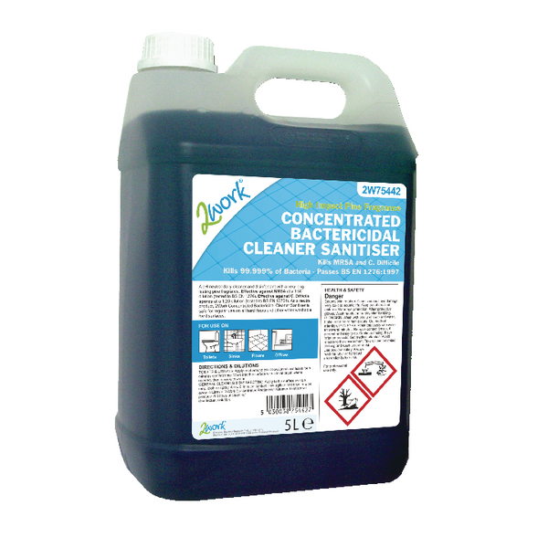 2Work bactericidal cleaner 5L 808