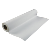 Epson Premium Water Resistant Canvas 24 inches x40 Metre Roll 350gsm C13S041847