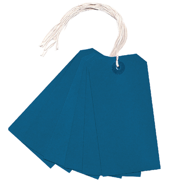 Strung Tag 120x60mm Blue (Pack of 1000)